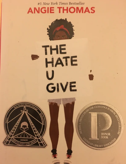 Caring Donors Give Students in Chicago a Novel they Can Relate to - a project partially funded by the Student Research Foundation